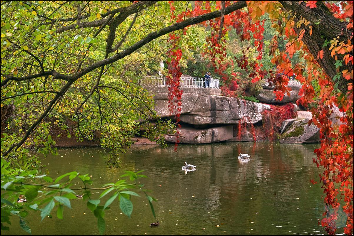 Экскурсия в Умань-парк Софиевка