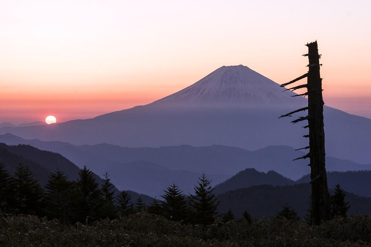 Групповой тур по Японии: «Шедевры Классической Японии»